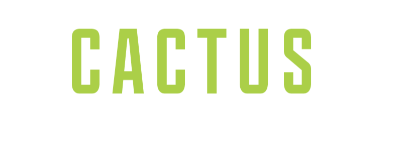 Cactus Accounting Services N.V.